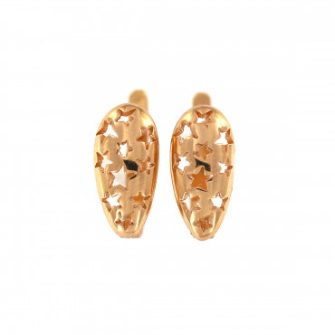 Rose gold earrings BRA02-11-01