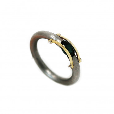 Stainless steel ring with gold ART-R23
